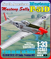 cover P51D SAAF Museum Mustang sally paper model