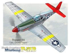 topper P51B tuskegee artwork